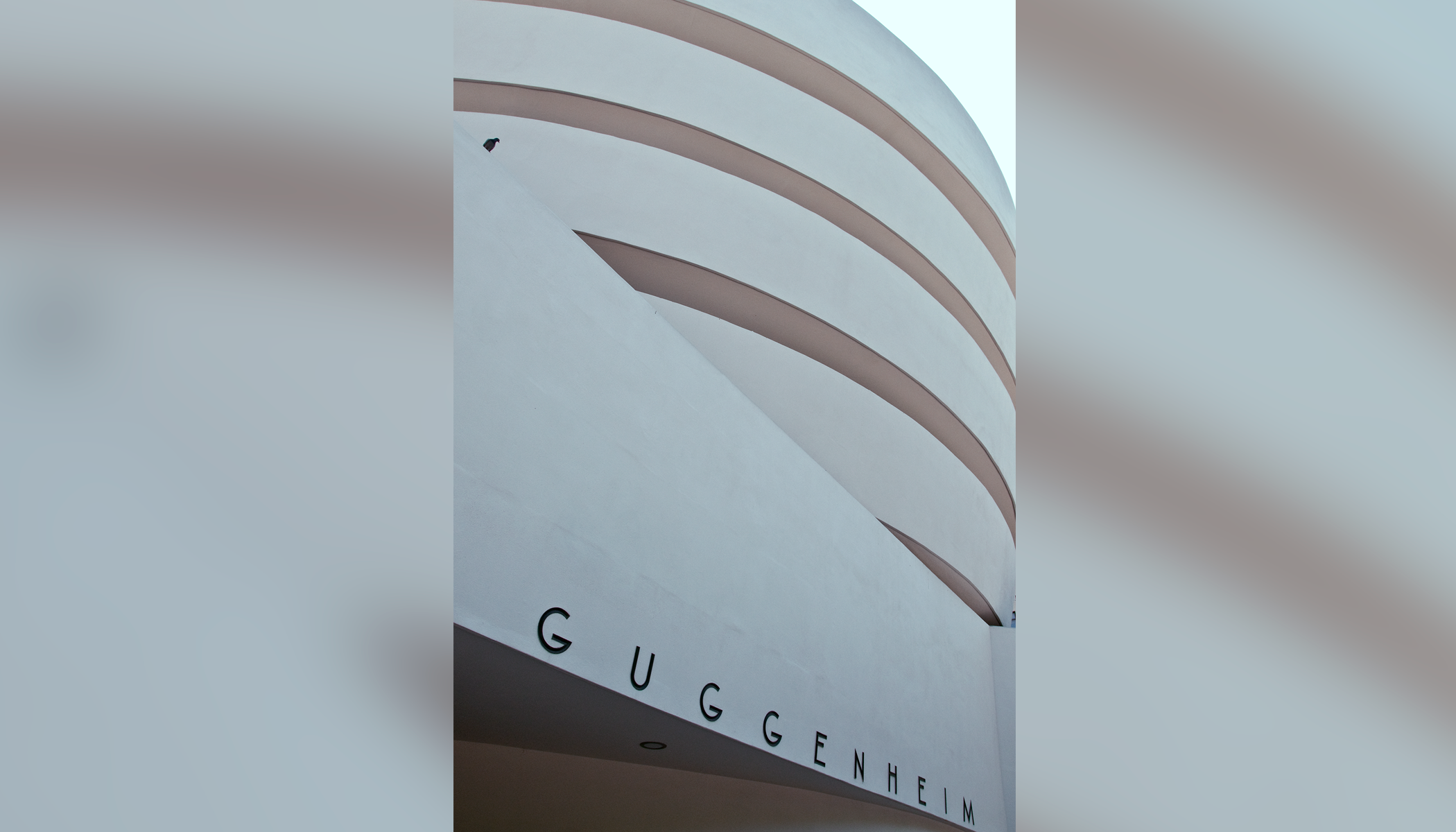 Museum Guggenheim NY 2